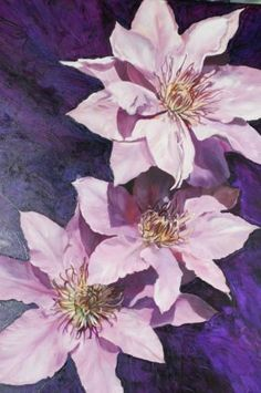 Midnight Clematis- Big pink clematis flowers nestling on a midnight purple backdrop. Big canvas flower painting by Anita Nowinska