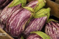 Health by MarcPollard  IFTTT 500px California Oakland eggplant farmers food freshness healthy market nutrition organic ra