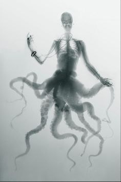 Hybrid X-ray images of bird people and octopus women Psychedelic Art, Le Kraken, Bird People, Photocollage, Unique Image, The Villain, Illustrations, Dark Art, Cool Art