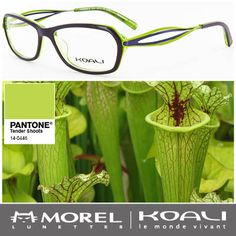 Our Nepenthe 7127K frame is blooming with spring green accents.