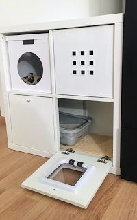 Hiding Cat Litter Box, Hidden Litter Boxes, Diy Cat Enclosure, Grand Chat, Cat Hacks, Cat Playground, Animal Room, Photo Chat, Cat Room