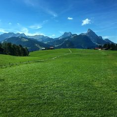 Train ride view from Gstaad to Schönried, Switzerland (photo by sinasserendipity) Beautiful Places In The World, Most Beautiful, Train Rides, Switzerland, Instagram Images, Spaces, Mountains, Travel, Nice Asses