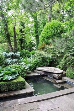 Small water features garden ponds how to build a backyard garden pond Lush Garden, Shade Garden, Dream Garden, Diy Garden, Small Water Features, Water Features In The Garden, Outdoor Water Features, Ponds Backyard, Backyard Landscaping