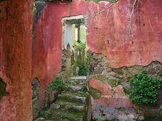 Casa abbandonata / Forlorn Home