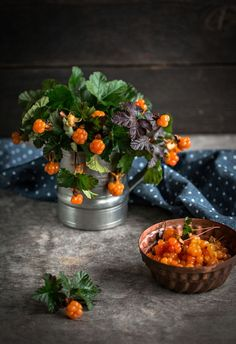 Still life with cloudberries by Angelika Sorkina on 500px