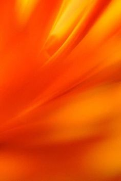 Color Naranja - Orange!!!