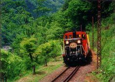 Sagano Romantic Train in Kyoto via @ReadyClickAndGo #Travel #Japan
