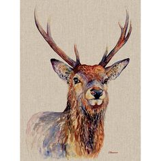 'Proudlock' Print on Canvas Alpen Home Size: H x W Art Prints, Deer Wall Art, Canvas Prints, Antler Art, Painting Prints, Art, Framed Art Prints, Watercolor Paintings Easy, Watercolor Autumn Leaves