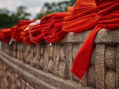 Monks robes, Anuradhapura Sri Lanka by Steve Pamp on Anuradhapura Sri Lanka, Le Sri Lanka, Buddhist Monk, The Monks, Trotter, Buddhism, Asia, Palette, Passion