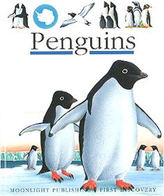 Learn all about Penguins in this First Discovery Book for ages 5 to 8 years old.  36 very colorful and informative pages depict and tell all about our favorite flightless friends on the ice, in the sea, swimming, sliding, nesting and with their babies.