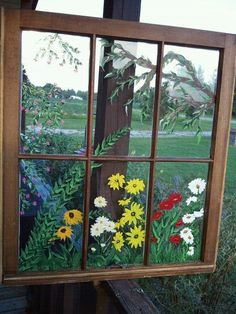 Flower Garden Through My Window