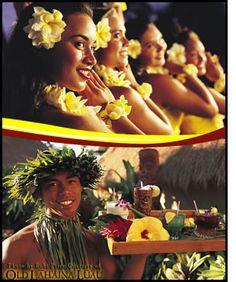Luau - Maui, Old Lahaina Maui Luau, Maui Hawaii, Old Lahaina Luau, Walk The Earth, Maui Vacation, Best Rated, Wildlife Paintings, South Pacific, Fun To Be One
