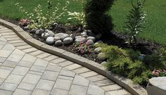 Gardenia Linear curbing used to define this garden Landscape Pavers, Landscape Materials, Sidewalk, Hamilton, Garden, Plants, Products, Lawn And Garden, Sidewalks