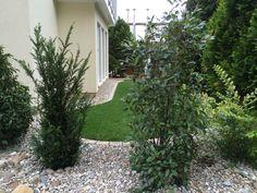 Gärten von Rapp, Garten- und Landschaftsbau und Gartengestaltung ...