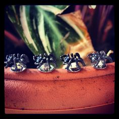 Deakin & Francis #Ant #Studs #nature #accessories #bugs #jewellery