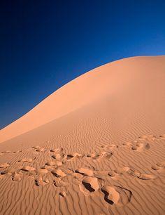 Footprints - Coral Pink Sand Dunes, Utah