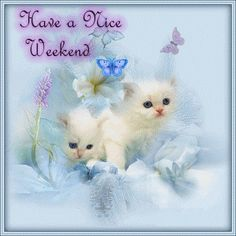 Weekend Quotes : QUOTATION – Image : Quotes Of the day – Description Have a nice weekend! cute animated friend weekend friday sunday saturday greeting weekend greeting Sharing is Caring – Don't forget to share this quote ! Weekend Gif, Hello Weekend, Have A Lovely Weekend, Happy Weekend, Happy Saturday, Bon Weekend, Happy Friday, Sunday, Saturday Quotes