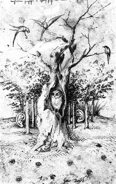 El Bosque tiene ojos. Dibujo