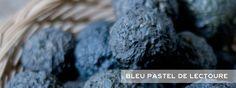Bleu pastel de Lectoure - Cocagne