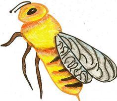 Bee. color pencil. Markers