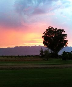 Groote Vallei Farm, Tulbagh, South Africa