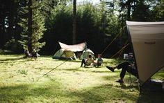 Natuurkampeerterreinen van Staatsbosbeheer