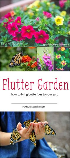 Would your kids be brave enough to touch & hold the butterflies like this?? This is the perfect project to do with them this summer -- grow a butterfly garden! Love these tips for raising the caterpillars and making your yard a happy spot for the new fluttery friends. Great ideas for container gardening, too!