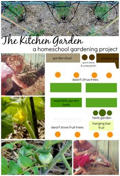The Kitchen Garden: A Homeschool Gardening Project from An Everyday Story