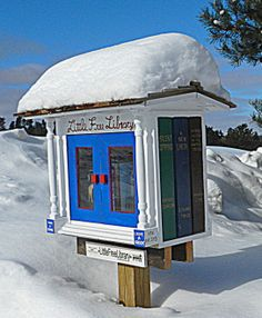 Little free library, Traverse City, Michigan Mini Library, Little Library, Free Library, Library Books, Library Ideas, Nerd Decor, Traverse City Michigan, Community Library, Lending Library