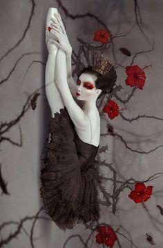 Metamorphosis by Natalie Shau