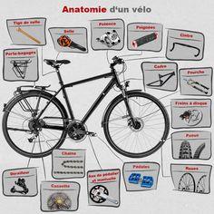 Piece velo - L'anatomie du vélo