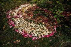 Marvelous Land Art by Pierre Arnoldi - 1