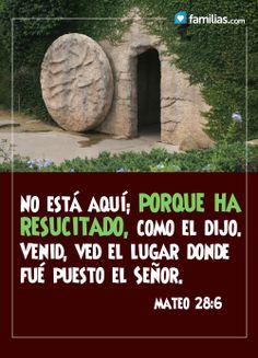 JESUS HA RESUCITADO VE: http://familias.com/gracias-a-el-la-humanidad-depende-de-este-hombre