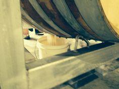 Wine Barrel Cleaning Australia, Cleaning Equipment for Wine Vats & Barrels Cleaning Equipment, Bacchus, Working Area, Deep Cleaning, Barrel, Events, Wine, Barrel Roll, Barrels