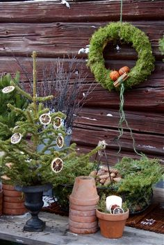 Christmas in the garden using natural elements