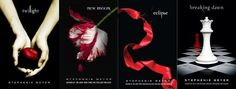 Twilight Saga...............Great Books Loved It!