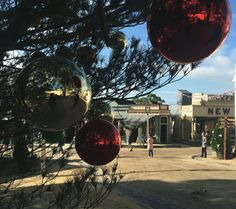 Only one more sleep! There are so many things to see and do at Sovereign Hill this Christmas in July.