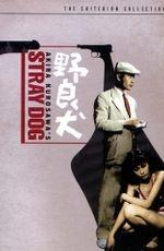 Смотреть фильм «Бездомный пес» онлайн в хорошем качестве бесплатно и без регистрации | Nora inu (1949) HD 720
