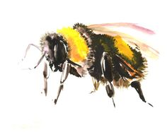 Bumblebee original watercolor painting bee art bee by ORIGINALONLY, $24.00