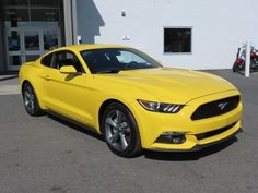 New 2015 Ford Mustang Automatic 18 Inch Wheels We Sell at Invoice! Mustang Girl, 2015 Ford Mustang, Ford Mustang For Sale, Ford Mustang Shelby, Ford Mustangs, Muscle Cars, Cool Old Cars, Hatchback Cars, Cars Usa