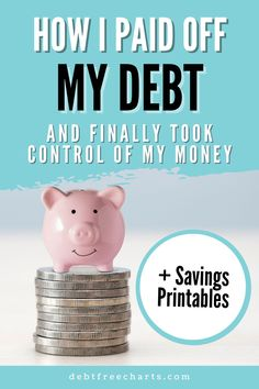Paying off debt, saving money, and reaching big money goals are easier to accomplish when you have support or have seen stories of success. Read on to find out how Danielle paid off her debt and learned to manage money, and is reaching her financial goals! Stories Of Success, Free Stories, Borrow Money, Big Money, Savings Chart, Free Charts, Cash Envelope System, Budget Binder, Cash Envelopes