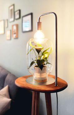 Natur im Wohnzimmer.  Natur. Natürlich im Raum. Pflanzen. Natürlich ohne Pflege. Möbel. Natürlich nachhaltig. Desk Lamp, Table Lamp, Lighting, Furniture, Home Decor, Floor Lamps, Home Decor Accessories, Nursing Care, Ad Home