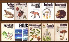 Hungary, Memories, History, Comics, Memoirs, Souvenirs, Historia, Cartoons, Comic