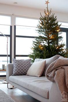 joulukuusi_ilmankoristeita