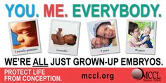 You. Me. Everybody. We're all just grown-up embryos. Billboard 4 ft x 8 ft