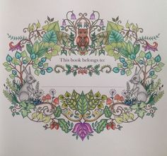 Going Back To The Beginning With Enchanted Forest Completed WHSmith Pencil Crayons Mostly On May