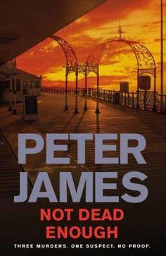Not Dead Enough (Roy Grace #3) by Peter James.   In Now @ Canterbury Tales Bookshop / Book exchange / Guesthouse / Cafe, Pattaya..