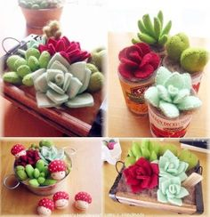 Felt succulents and cactus ! Felt Flowers, Diy Flowers, Fabric Flowers, Paper Flowers, Cactus Fabric, Paper Cactus, Felt Diy, Felt Crafts, Diy And Crafts