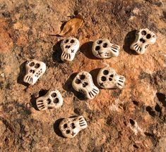 """https://flic.kr/p/69B5JH 