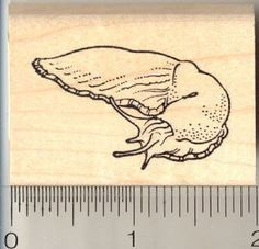 Slug on the Move Rubber Stamp * Continue to the product at the image link.